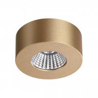 Потолочный светодиодный светильник Odeon Light Bene 4284/7CL