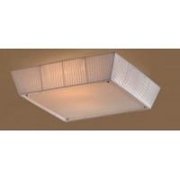 Настенно-потолочный светильник CL914141 CITILUX