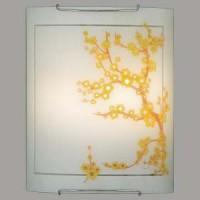 Настенно-потолочный светильник CL922141 CITILUX