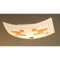 Настенно-потолочный светильник CL932020 CITILUX