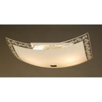 Настенно-потолочный светильник CL932024 CITILUX
