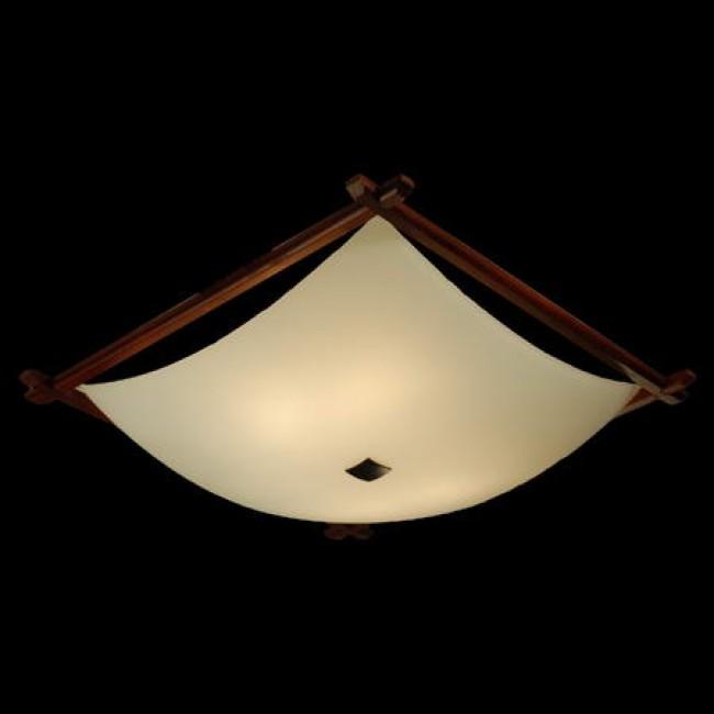 Настенно-потолочный светильник CL932112 CITILUX