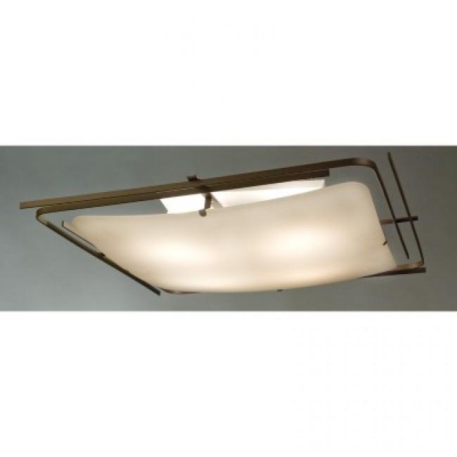 Настенно-потолочный светильник CL939401 CITILUX