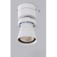 Светодиодный накладной светильник Дубль-1 CL556510 CITILUX
