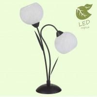 Настольная лампа декоративная BAGHERIA GRLSF-6294-02 Lussole