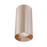Потолочный светильник Alfa C010CL-01RG Maytoni