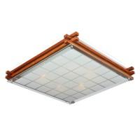 Настенно-потолочный светильник OML-40527-05 OMNILUX