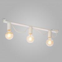 Потолочный светильник 2839 Mossa TK Lighting