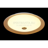 Накладной светильник Euler CL815-PT50-G MAYTONI