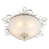 Настенно-потолочный светильник OML-76517-05 OMNILUX