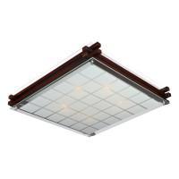 Настенно-потолочный светильник OML-40507-05 OMNILUX
