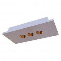 Потолочный светодиодный светильник Architect OL1072-WG/3 Loft IT