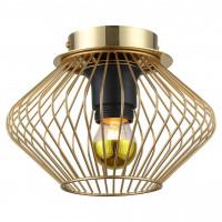 Потолочный светильник Brooks GRLSP-8248 Lussole