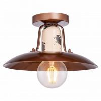 Потолочный светильник Vermilion LSP-8161 Lussole